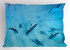 Köpek Balıkları Yastık Kılıfı Köpek Balıkları Mavi