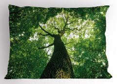 Yaşlı Ağaç Gölgesinde Yastık Kılıfı Yaşlı Ağaç Gölgesinde Huzur Temalı