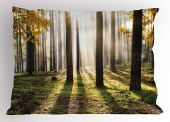 Güneşli Orman Yastık Kılıfı Sonbahar