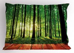 Ormandaki Ahşap Yol Yastık Kılıfı Orman Güneş Yeşil