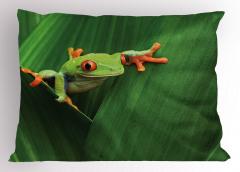 Yeşil Bitki ve Kurbağa Yastık Kılıfı Doğa