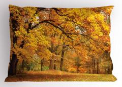 Turuncu Yapraklı Ağaç Yastık Kılıfı Doğa Orman Ağaç Turuncu