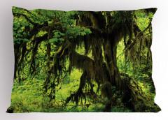 Yağmur Ormanı Temalı Yastık Kılıfı Doğa Ağaç