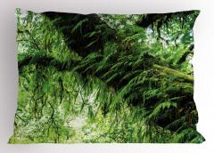 Orman Manzaralı Yastık Kılıfı Yeşil Ağaç Doğa