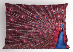 Tavus Kuşu Desenli Yastık Kılıfı Kırmızı Lacivert Doğa