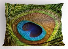 Tavus Kuşu Temalı Yastık Kılıfı Yeşil Kahverengi Mavi