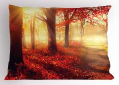 Sonbahar Temalı Yastık Kılıfı Kırmızı Yaprak Ağaç