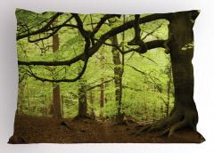 Orman Manzaralı Yastık Kılıfı Ağaç Yeşil Kahverengi