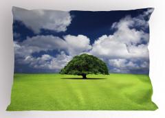 Yaşlı Ağaç Yastık Kılıfı Yeşil Yaşlı Ağaç