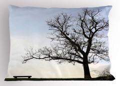 Yaprakları Dökülmüş Ağaç Yastık Kılıfı Yaprakları Dökülmüş Ağaç