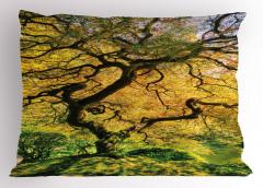 Akçaağaç Desenli Yastık Kılıfı Bahar Yeşil Doğa Sarı