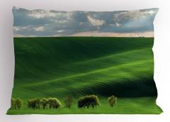 Uçsuz Bucaksız Çayır Yastık Kılıfı Yeşil Doğa Ağaçlar