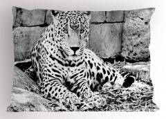 Nostaljik Jaguar Yastık Kılıfı Siyah Beyaz Jaguar