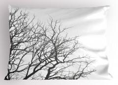 Yapraksız Ağaçlar Yastık Kılıfı Kahverengi Beyaz