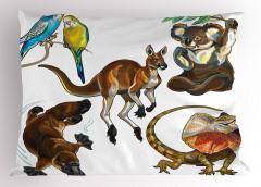 Tropikal Hayvanlar Yastık Kılıfı Koala Kanguru Kuş