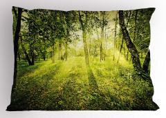 Ormanda Gün Doğumu Yastık Kılıfı Güneş Doğa