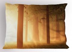 Sihirli Orman Yastık Kılıfı Sisli Puslu Doğa