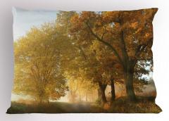 Sonbahar Ağaçları Yastık Kılıfı Sonbahar Ağaçlar