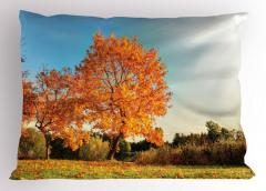 Kızarmış Yapraklar Yastık Kılıfı Ağaç Turuncu Yapraklar
