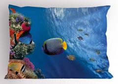 Tropikal Balıklar Yastık Kılıfı Tropikal Balıklar