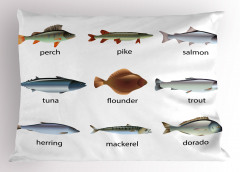 Balık Türleri Desenli Yastık Kılıfı Deniz Beyaz