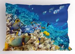 Mercan ve Balıklar Yastık Kılıfı Balıklar Mavi