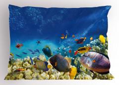 Deniz ve Balıklar Yastık Kılıfı Balıklar Mavi