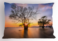 Ağaç ve Gökyüzü Temalı Yastık Kılıfı Ağaçlar