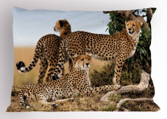 Çita Temalı Yastık Kılıfı Kahverengi Vahşi Yaşam Şık