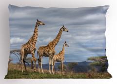 Zürafa Temalı Yastık Kılıfı Afrika Vahşi Yaşam Mavi