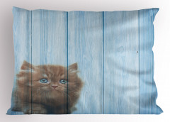 Sevimli Minik Kedi Desenli Yastık Kılıfı Mavi Ahşap
