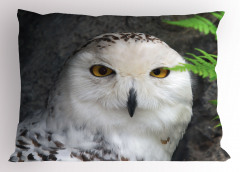 Kuş Portreli Yastık Kılıfı Beyaz Şık Tasarım Doğa