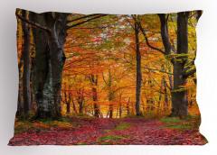 Ormanda Sonbahar Sabahı Yastık Kılıfı Yaprak Ağaç Doğa