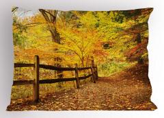 Ormanda Sonbahar Yastık Kılıfı Ağaç Yaprak Doğa Şık