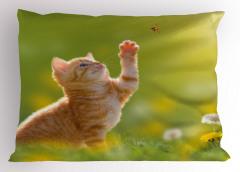Uğur Böceği ve Pati Yastık Kılıfı Tatlı Kedicik