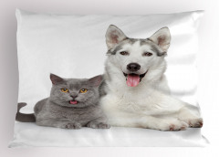 Kedi Köpek Dostluğu Yastık Kılıfı Kedi Köpek