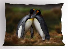 Sarılan Penguenler Yastık Kılıfı Kuş Hayvan Doğa