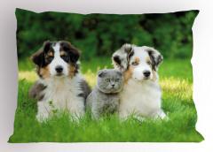 Köpekler ve Kedi Yastık Kılıfı Yeşil Doğa Ağaç