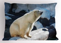 Kutup Ayısı Yastık Kılıfı Vahşi Doğa Hayvan