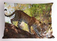 Yürüyen Leopar Yastık Kılıfı Benekli Vahşi Doğa