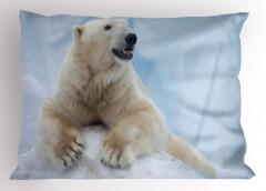 Kardaki Kutup Ayısı Yastık Kılıfı Beyaz Hayvan
