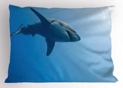 Yüzen Köpek Balığı Yastık Kılıfı Mavi Deniz