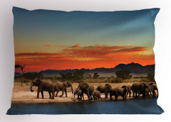 Fil Geçidi Temalı Yastık Kılıfı Afrika'da Gün Batımı