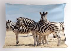 Zebra Desenli Yastık Kılıfı Afrika'da Yaşam Temalı