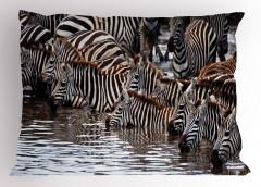 Afrika'da Yaban Hayatı Temalı Yastık Kılıfı Zebralar