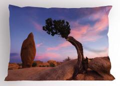 Doğada Huzur Temalı Yastık Kılıfı Ardıç ve Gökyüzü