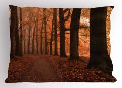 Doğada Sonbahar Temalı Yastık Kılıfı Yaprak Ağaç