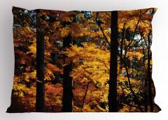 Sararmış Yaprak Desenli Yastık Kılıfı Sonbahar Temalı