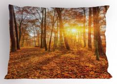 Sonbaharda Gün Batımı Temalı Yastık Kılıfı Yapraklar