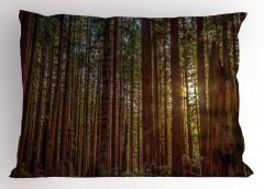 Huzurlu Orman Temalı Yastık Kılıfı Ağaç ve Doğa
